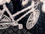So pimpt man ein Bike - ein älterer Herr stellt uns sein Werk vor - zum Streicheln! Genial - finden wir!