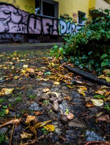 Berliner Scheiße